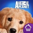 Animal Planet Hide & Seek Pets